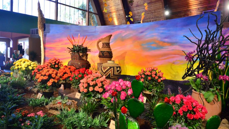 Roses on Display at LA County Fair